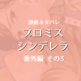 プロミス・シンデレラ【番外編3】ネタバレ感想